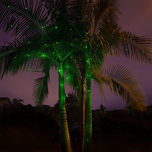 Green-SparkleMagic--Illuminator-Laser-Light-below-King-Palm-Tree